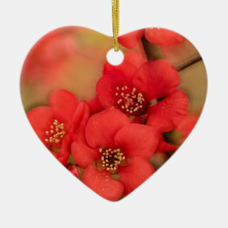 Red Quince Blossom Ceramic Heart Decoration