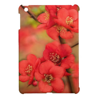 Red Quince Blossom iPad Mini Covers