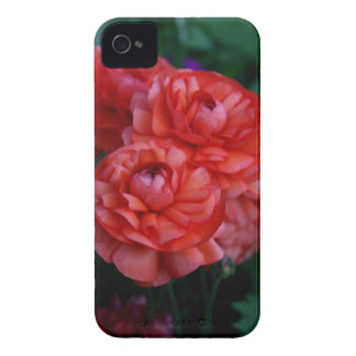 Red Rannunculus Floral Blackberry Case
