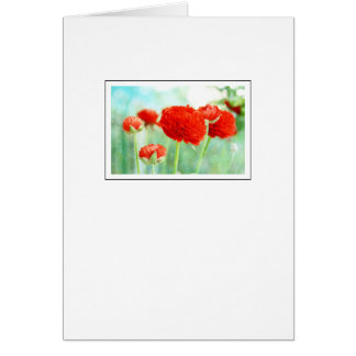 Red Ranunculus Flowers Card