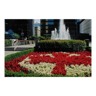 Red Red and white maple leaf display, Vancouver, C Poster