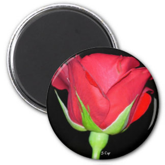 Red Red Rose, S Cyr 6 Cm Round Magnet