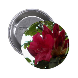Red Rhododendron Flower and Buds 6 Cm Round Badge