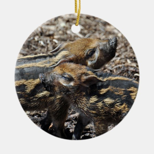 Red River Hog Ornament