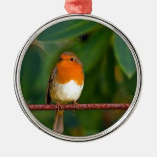 Red ROBIN Christmas Ornament