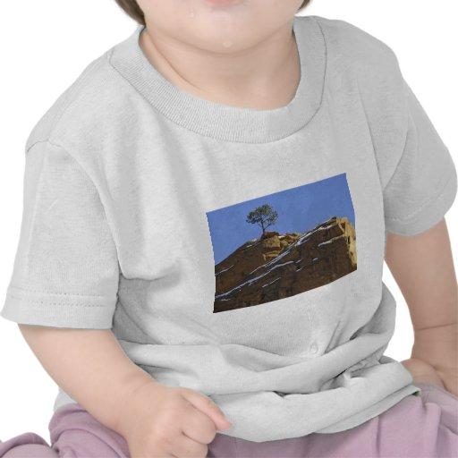 Red Rock Canyon 5 Shirt