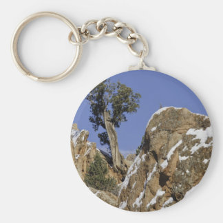 Red Rock Canyon 7 Basic Round Button Key Ring