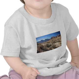 Red Rock Canyon Dry Riverbed Tshirts