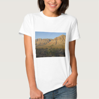 Red Rock Canyon National Conservation Area 2 Tee Shirts