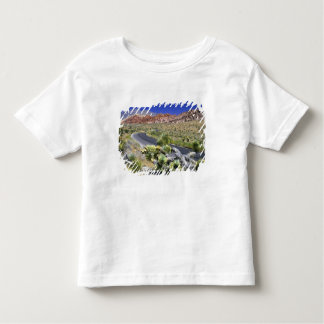 Red Rock Canyon National Conservation Area, Las Toddler T-Shirt