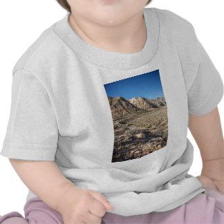 Red Rock Canyon View T Shirt