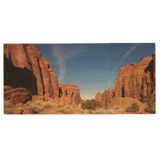 Red Rock Canyon Wood USB 2.0 Flash Drive