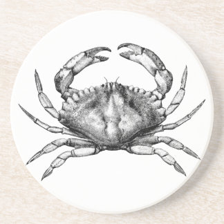 Red Rock Crab (Pacific) Coaster