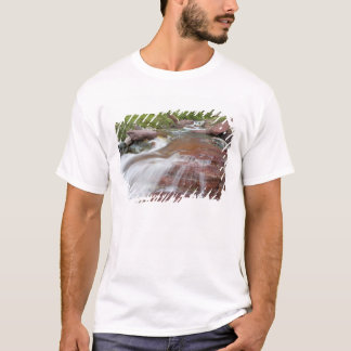 Red rock in Baring Creek in Glacier National T-Shirt