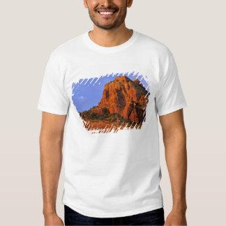 Red Rocks at Sterling Canyon in Sedona Arizona T Shirts