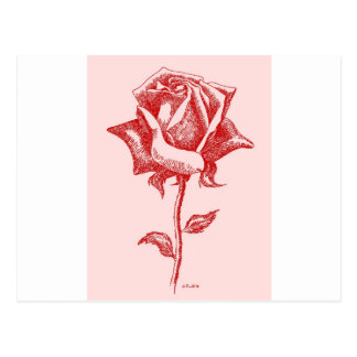 Red Rose 16.jpg Postcard
