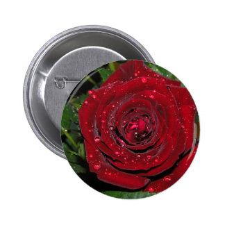 Red Rose #2 6 Cm Round Badge