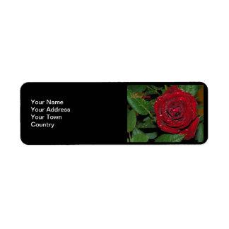 Red Rose #2 Return Address Label