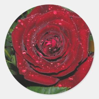 Red Rose #2 Round Sticker