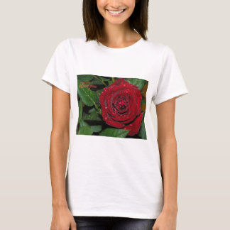 Red Rose #2 T-Shirt