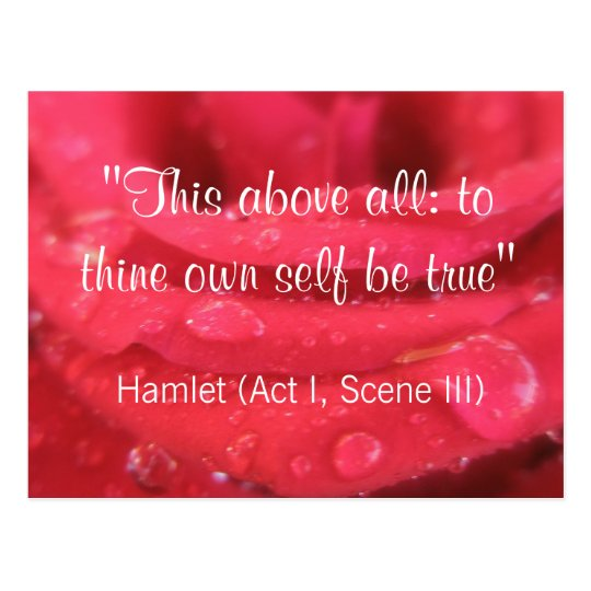 Red Rose and Raindrops Shakespeare Quote Postcard