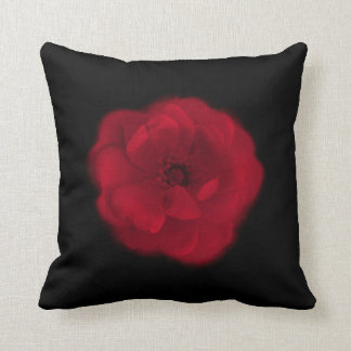 Red Rose. Black Background. Cushion