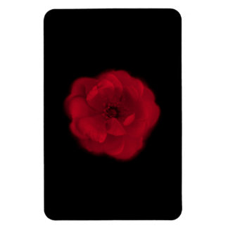 Red Rose. Black Background. Rectangular Photo Magnet