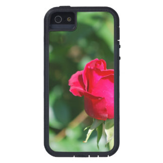 Red Rose Bud iPhone 5 Cover
