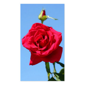 Red rose business cards