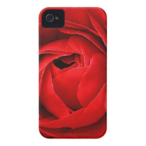 RED ROSE BLACKBERRY BOLD COVER