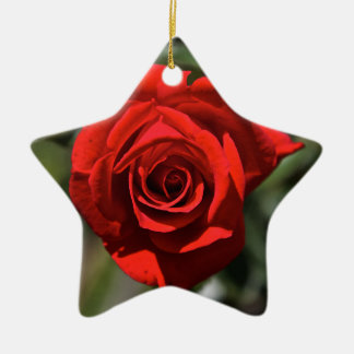 Red Rose Christmas Ornament