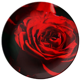 Red Rose Close Up Plate