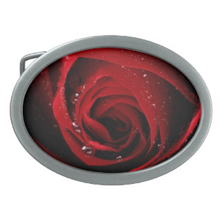 Red Rose Floral Flower Rose Petals Blossoms Dew Belt Buckles