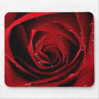Red Rose Floral Flower Rose Petals Blossoms Dew Mouse Mat