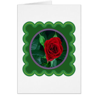 Red Rose Flower Floral Sensual Image 100 gifts Greeting Card