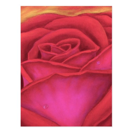 Red Rose Flower Painting - Multi Postcards
