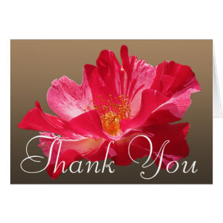 Red Rose Flower Photo Chic Mod Floral Thank You Card