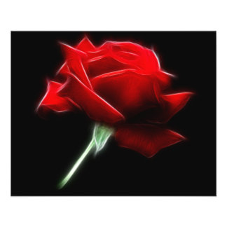 Red Rose Flower Plant 11.5 Cm X 14 Cm Flyer