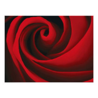 Red Rose Flower Swirl Classy Design Photo Art
