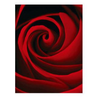 Red Rose Flower Swirl Classy Design Postcard