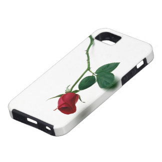 Red Rose for you iPhone 5 Case
