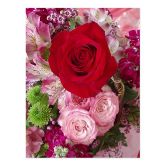 Red Rose Framed With Assorted Flowers and Roses Postcard