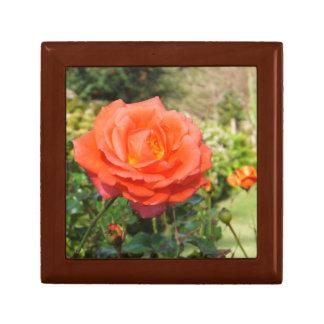 Red Rose gift box