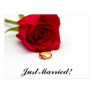 Red Rose & Gold Diamond Ring Post Cards