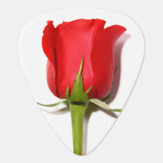 Red Rose Guitar Pick
