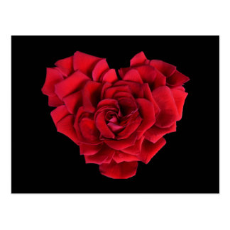 Red Rose Heart Postcard