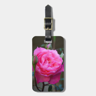 Red Rose In The Garden Of Hotel Carnavalet Luggage Tag