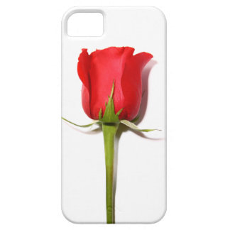 Red Rose iPhone 5 Case