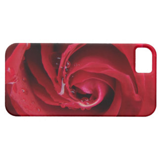 """Red rose"" iPhone 5 Cases"
