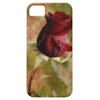 Red Rose. iPhone 5 Cover